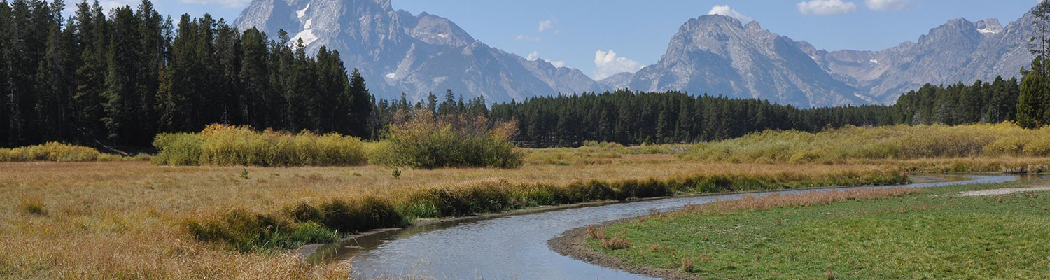 Mountains_1500x400_wide