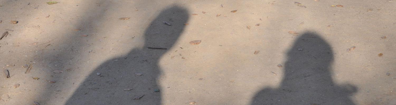shadows_1500x400_wide